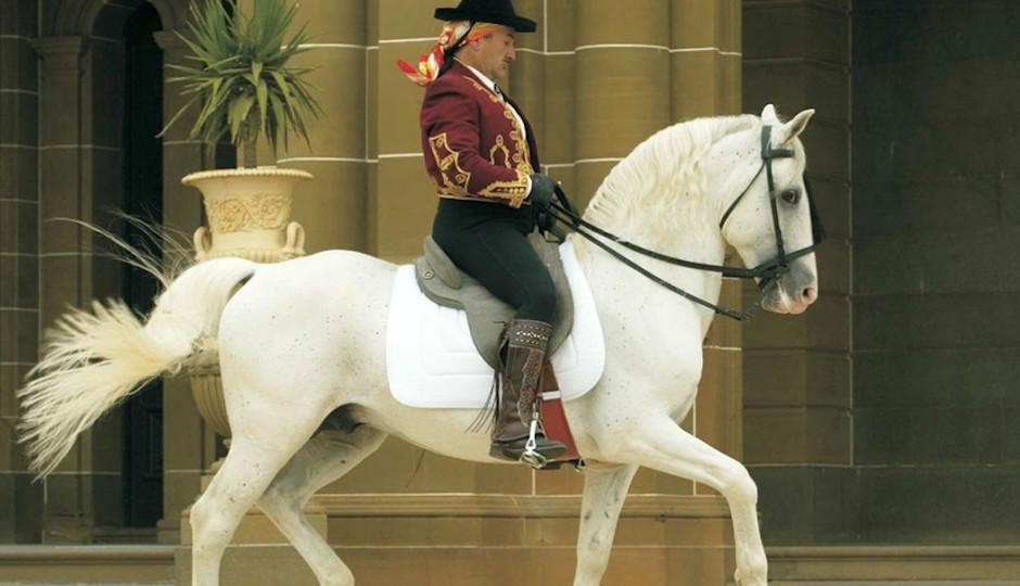 royal-horses-937x625