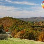 Steve Bower / Shutterstock.com