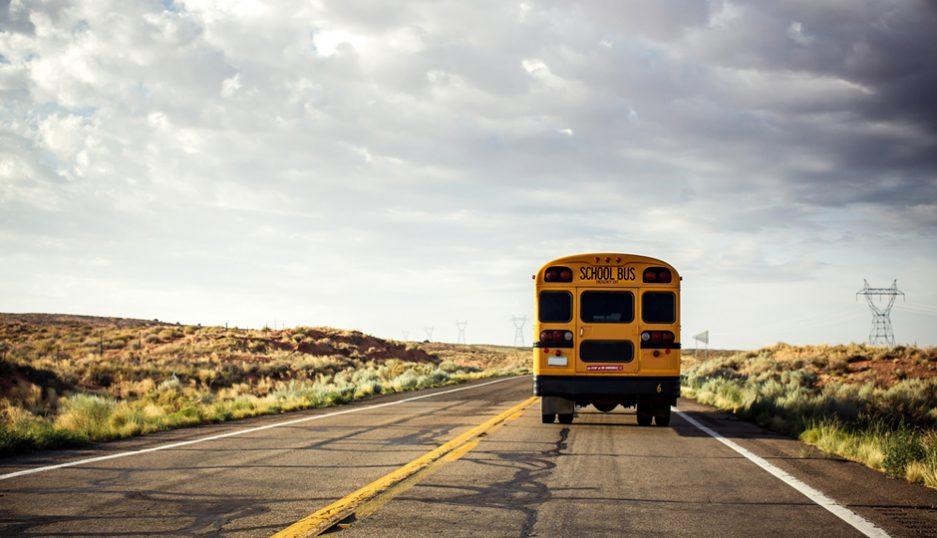 cars run over buses essay