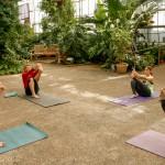 Yoga at the Horticulture Center | Casey Kallen Photography