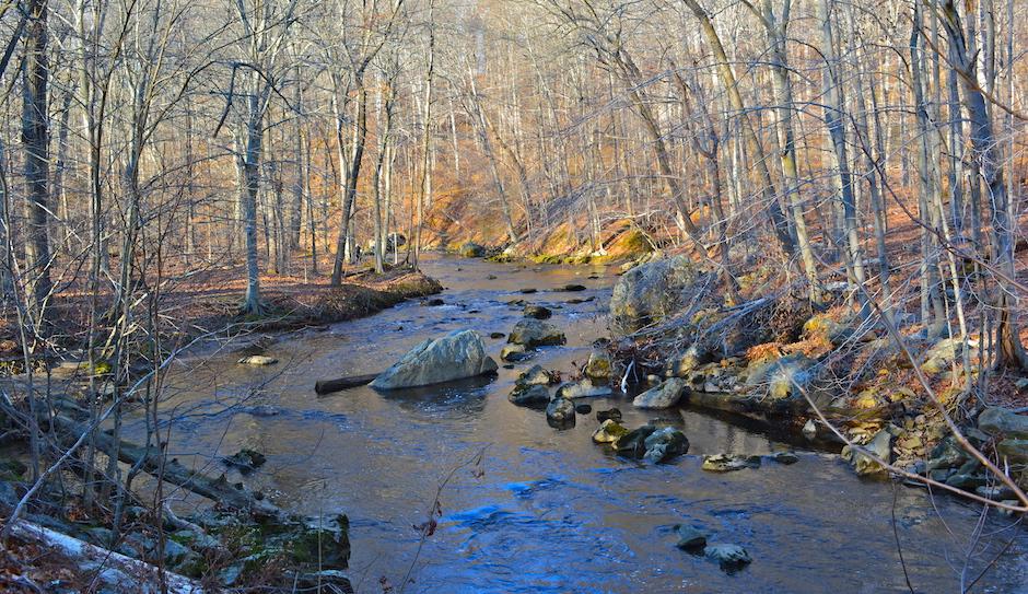 """Ridley Creek in SP Tgiving"" by Smallbones via Wikipedia"