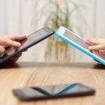 Bacho/Shutterstock.com
