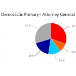 Kathleen Kane - leads Democratic poll