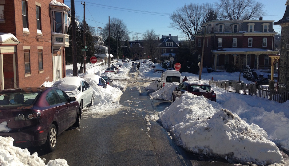 manayunk-ave-snow-ants