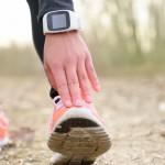 Maridav/Shutterstock.com