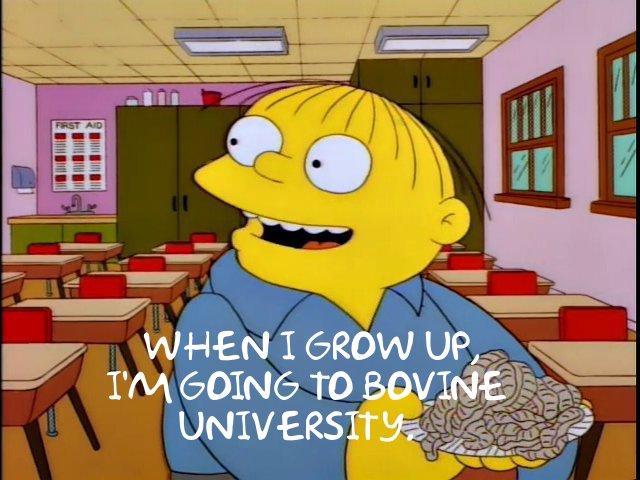 SimpsonsBovine