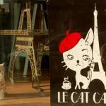 Le Cat Café | By Mariam Dembele