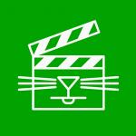 cat-video-festival