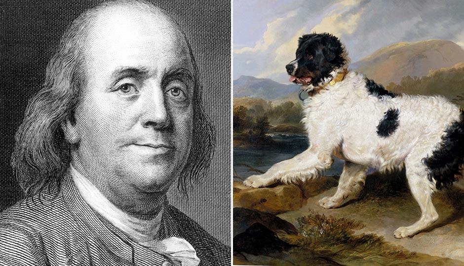 Ben Frannklin, Library of Congress; Sir Edwin Henry Landseer's Lion: A Newfoundland Dog
