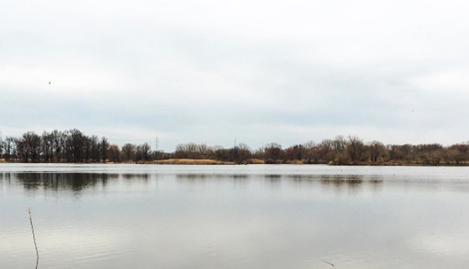 John Heinz Wildlife Refuge | Photo via @bewellphilly