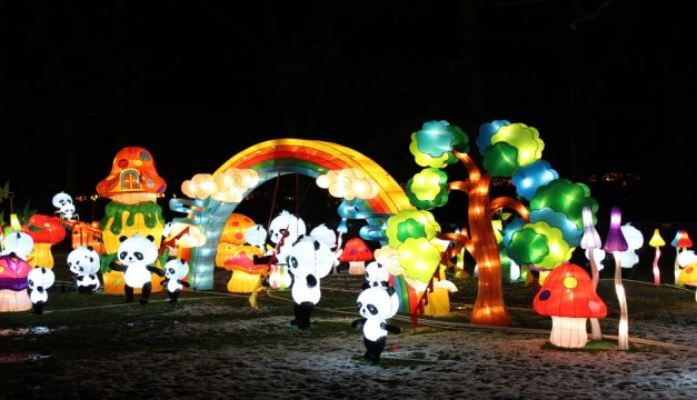 Panda Paradise lantern display. Photo by Sichuan Tianyu