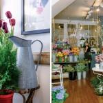 local garden shops