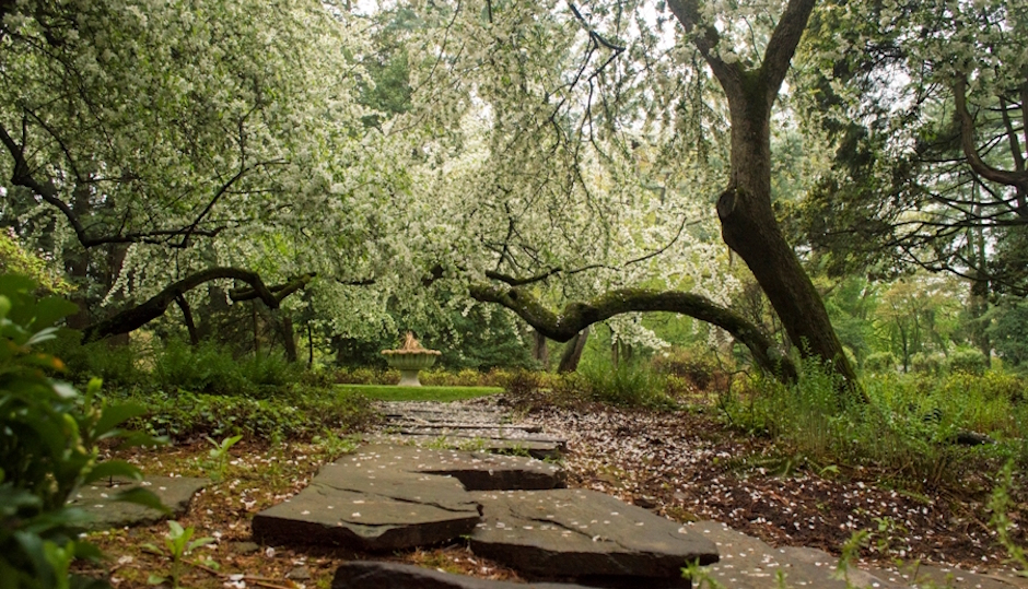 One of the pathways at Stoneleigh, the former John and Clara Haas estate in Villanova. Photos | Natural Lands Trust