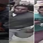 Suspects in police assault