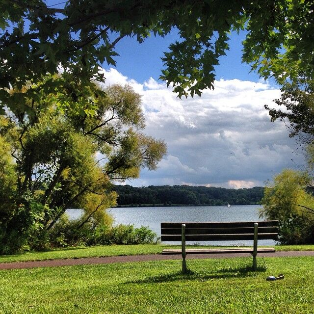 Bench at Peace Valley Lake   Nicole A.