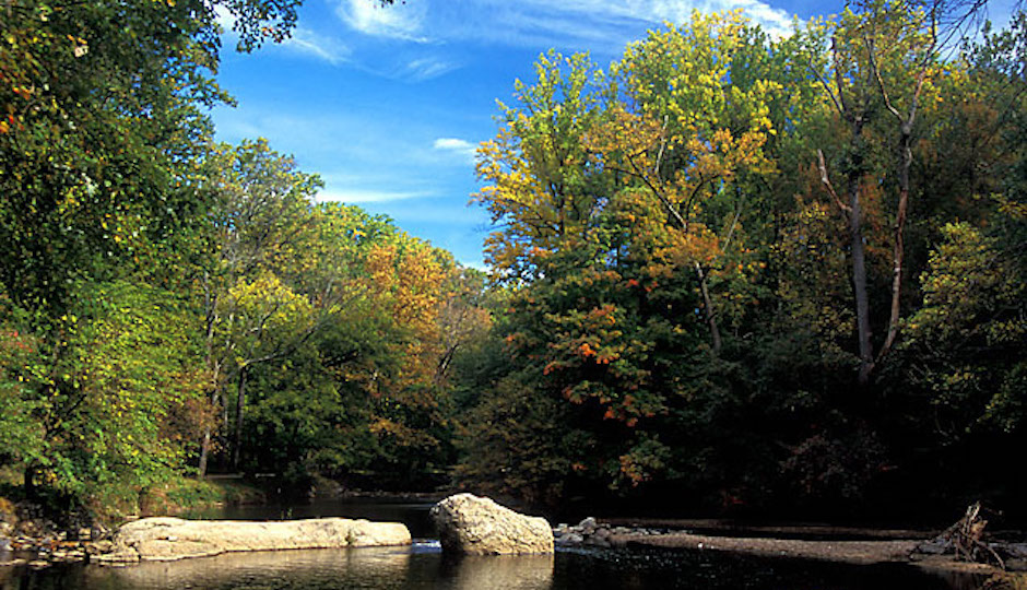 Photo credit: Friends of Pennypack Park