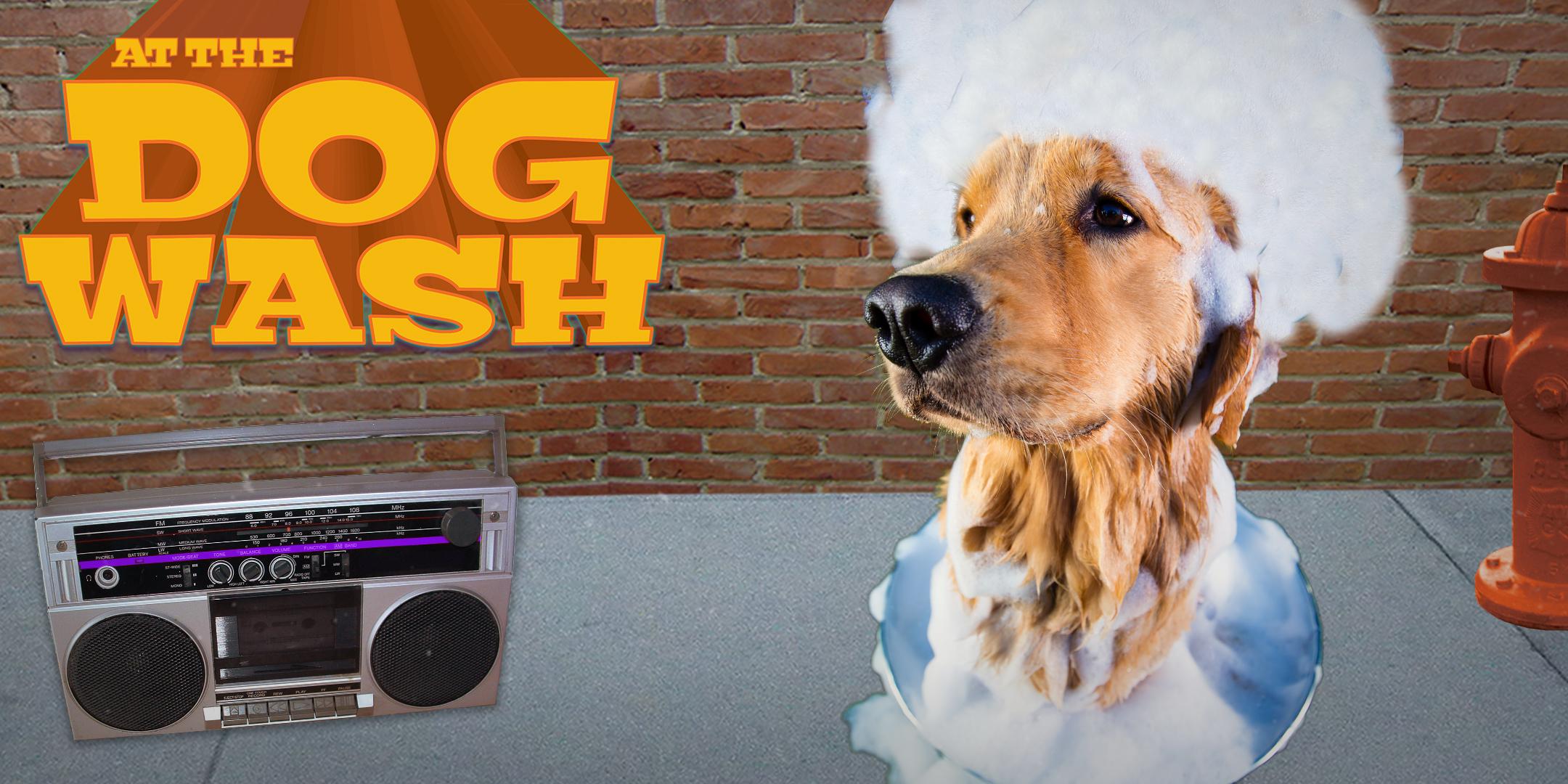 DogWash-2016