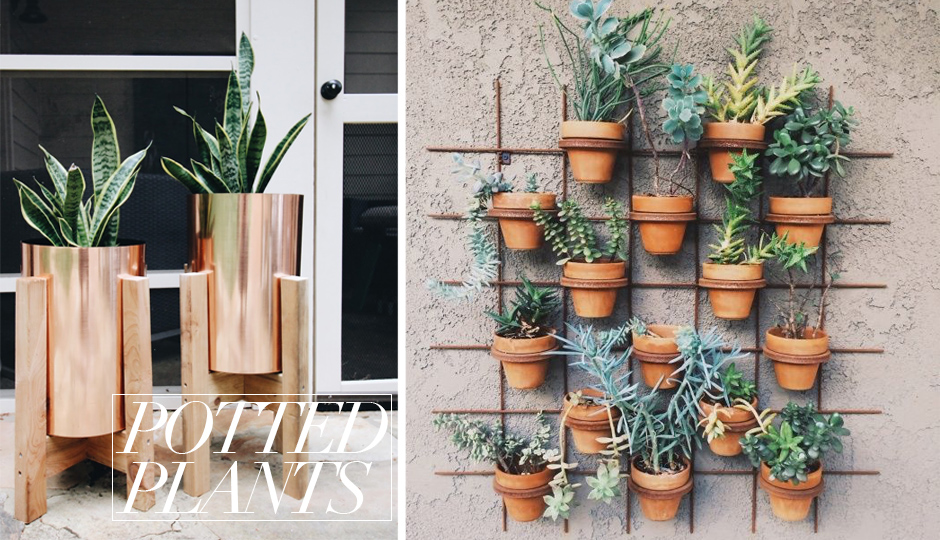 STEP UP YOUR PATIO GAME POTTED PLANTS