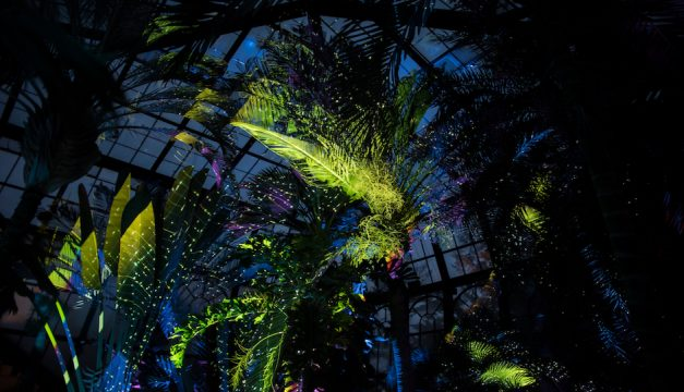 Nightscape is on display at Longwood Gardens. Photo by Kevin Ritchie