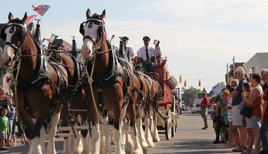 The Budweiser Clydesdales are visiting Philly. Photo from Facebook