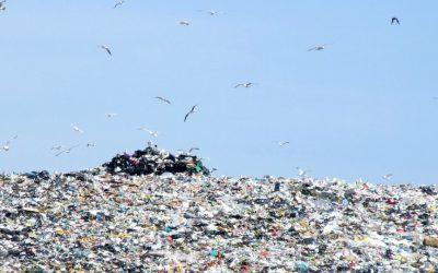 Landfill Trash