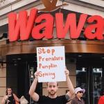 wawa pumpkin spicing billy cress 940