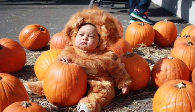 Manayunk is hosting an early Halloween celebration this Saturday. Photo provided