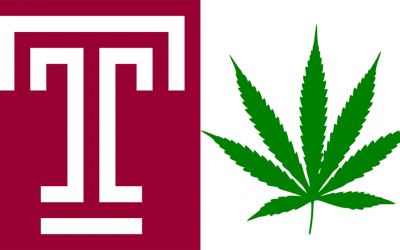 Temple logo; Cannabis leaf