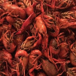 A big pile of crawfish at Chris' Jazz Cafe.
