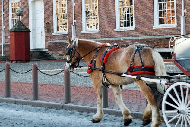 The Death of Old City's Horse-Drawn Carriage Business