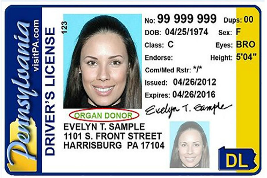 real id, license
