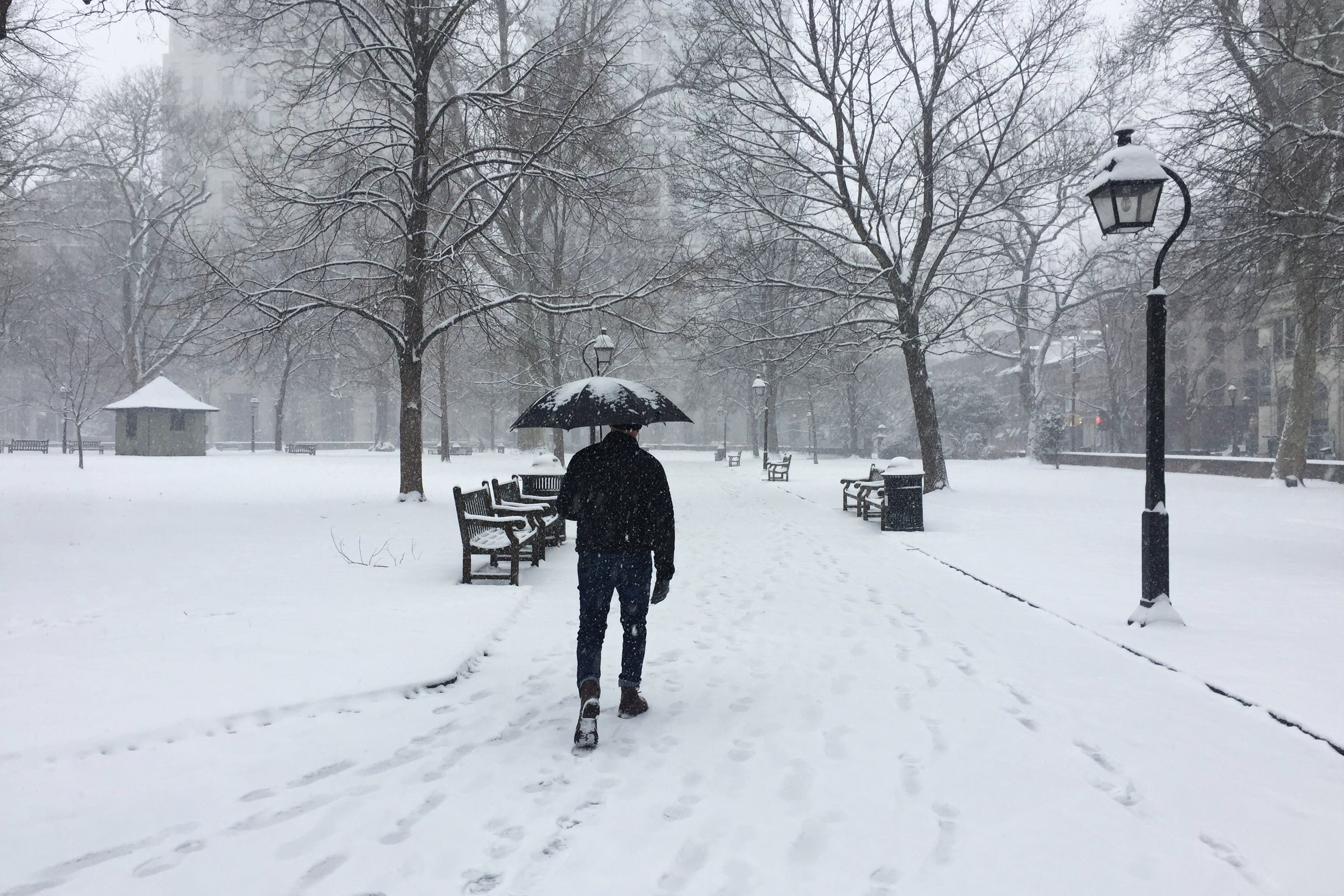 The Snow Is Here, Philly: The Latest on Roads, Public